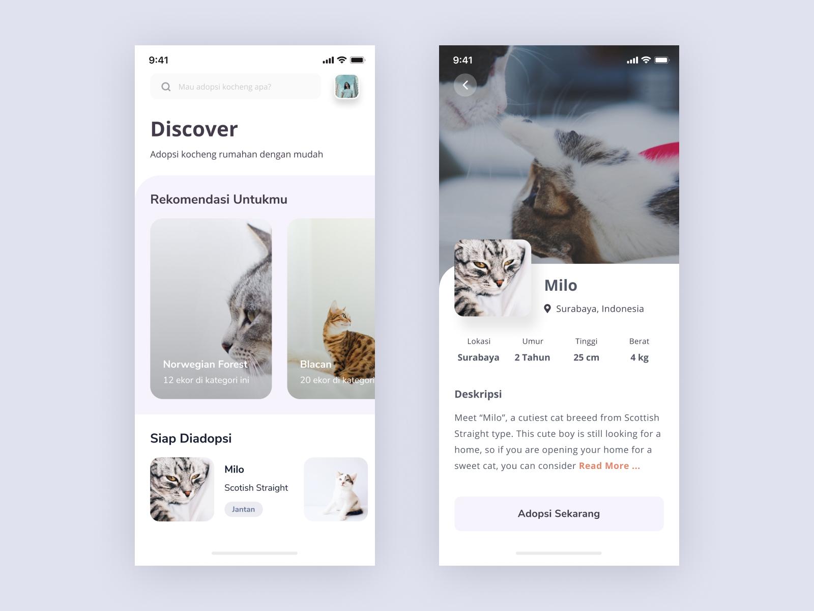 App Di Design kocheng adoption app - exploration design | search by muzli
